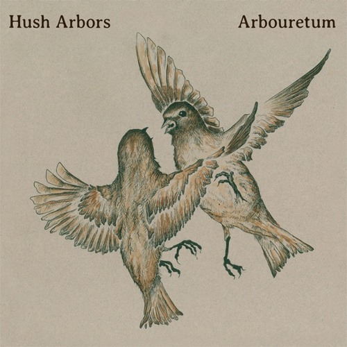 Arbouretum - New Scarab