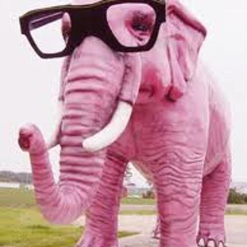 The  elephant drunk