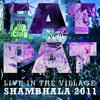 Fat Pat Live Shambhala 2011