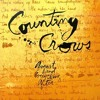 Counting Crows - Accidentally In love (Unplugged Cover Instrumental)