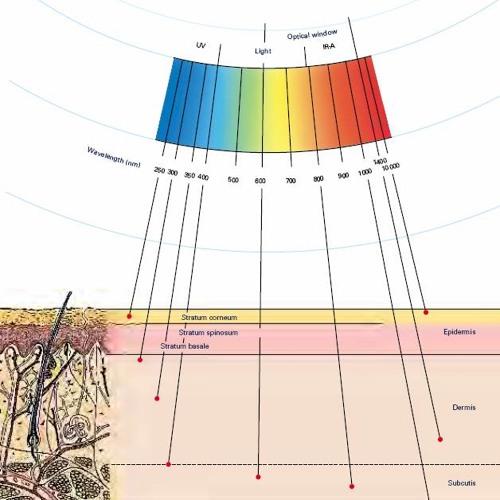 Subdermal - RGB Rainbow (Free DL)