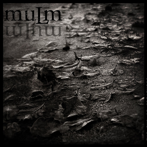 Mulm - Night Water Reflection - Excerpt