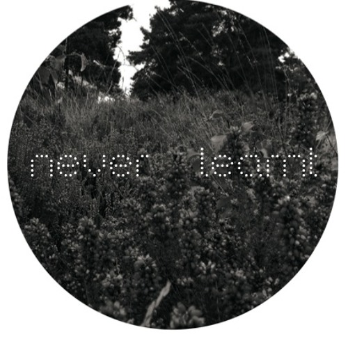 Nyra - Best of - Never Learnt 001