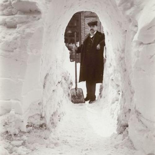 Snow Stories | Whad'Ya Know?
