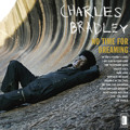 Charles Bradley Heartaches & Pain Artwork