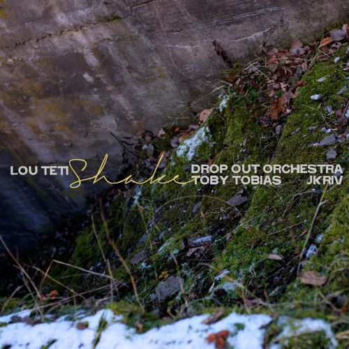 "Lou Teti - ""Shake (Drop Out Orchestra Remix)"""