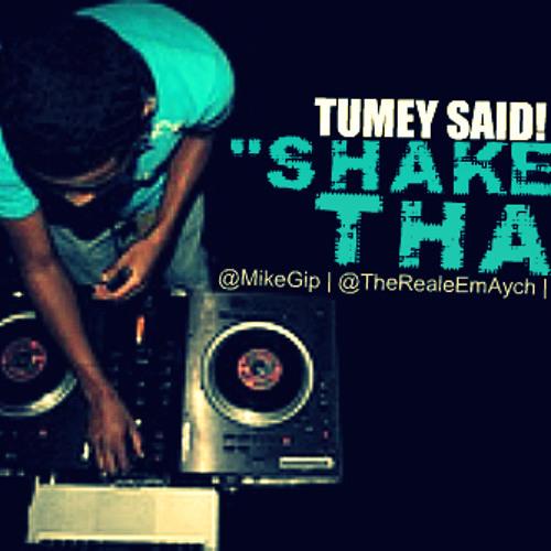 Tumey Rich & MH - Tumey Said Shake That  Rmx ft. Mike Gip