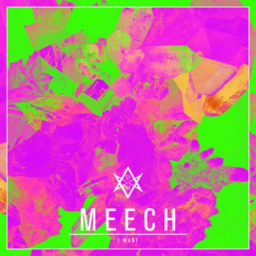 Meech - I Want (Raziek Remix)