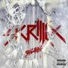 Skrillex-Bangarang&Syndicate (Mashup)