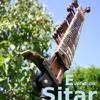 E-sitar-didgeridoo-meditation
