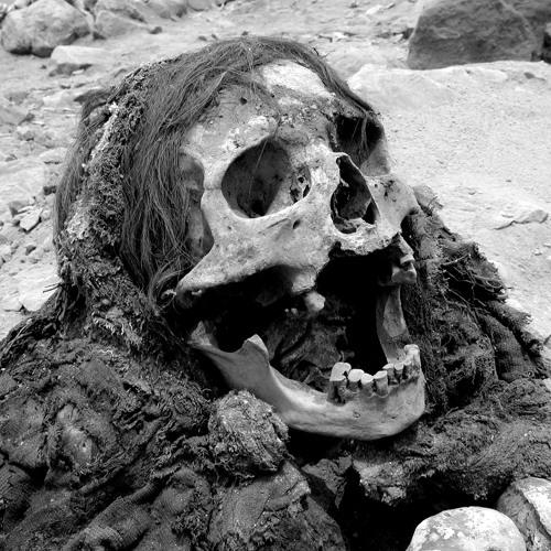 Mr Cropp - Mutilated skeleton [clip]