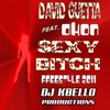 David Guetta Feat. Akon - Sexy Bitch 2011(Freestyle Version Extended) REPOSTED