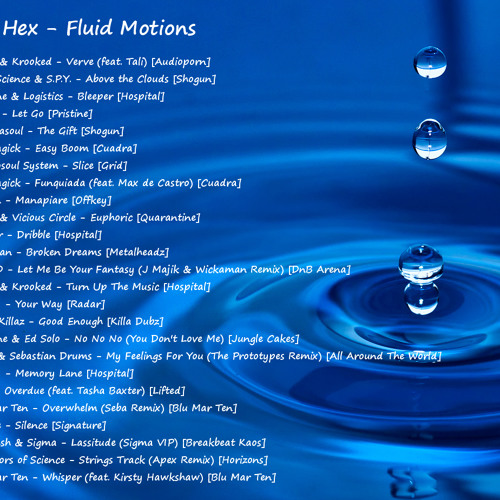 Fluid Motions