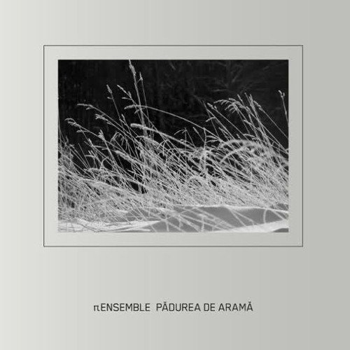 Petre Inspirescu (TT Ensemble) - Mirror Light (IDK remix )