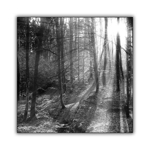 BIZZY-BIZ & PRODUKTIV-SCHAUSPIELER(herzklangDASalbum)
