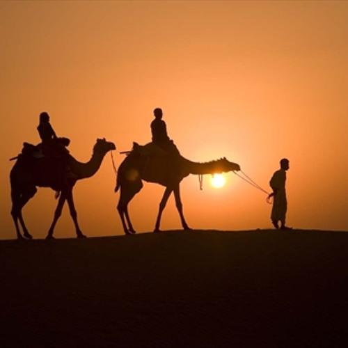 HEDI & FELIX - Camel walk (Original mix) (unsigned)