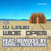 Dj Liquid - Hit it (Kemek Remix)