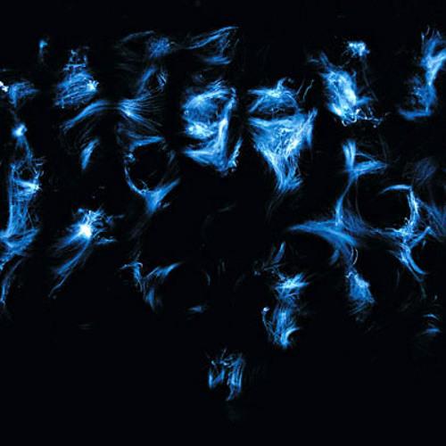 Defazed - Acid Shadows (Clip)