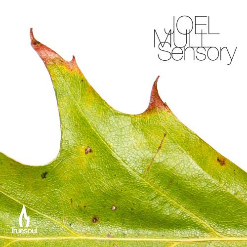 04 JOEL MULL - KEEP ON - clip
