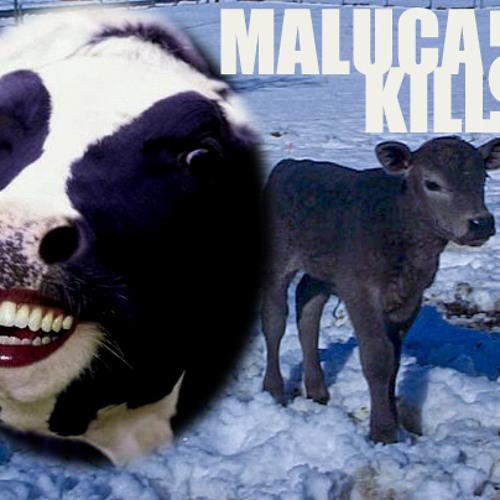 Maluca Kill Joe (Sense-NOW vs. Diplo vs. Skrillex vs. Kentucky)