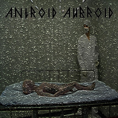 ANTROID AUBROID - When Antroid Met Aubroid