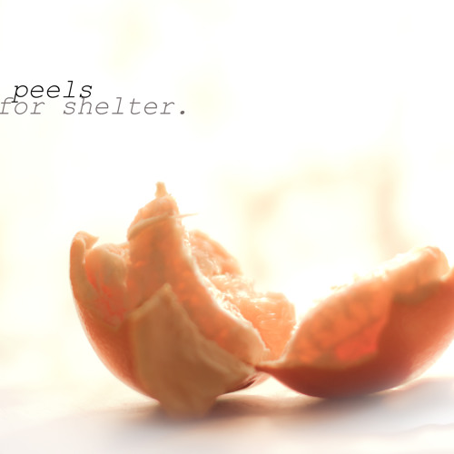 Orange Peels For Shelter