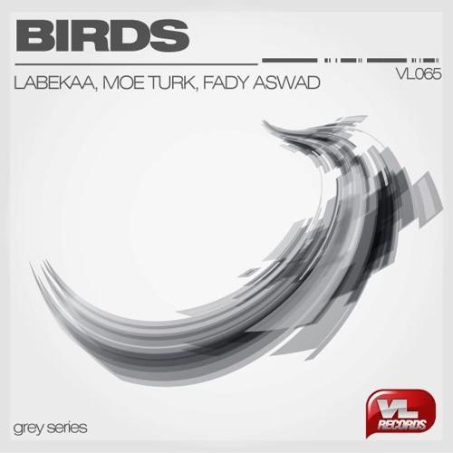 Labekaa, Moe Turk & Fady Aswad - Birds (Audible Astronaut Remix) [Free Download]