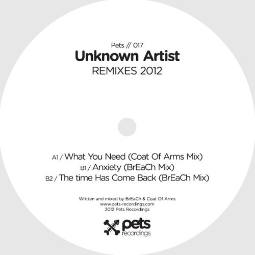 Coat Of Arms - What You Need (Coat Of Arms Mix) (Pets Recordings)