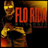 Flo-Rida & Sia vs David Guetta & Nicky Romero vs Miami Life - Wild Ones (Esteban Novoa Mashup)