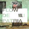 07- SONIDO Y LETRA ESLENDER E3- FLOW DE PATRIA MIX-TAPE