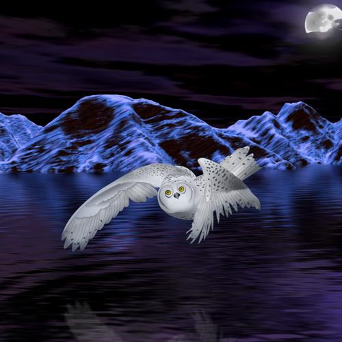 Good Night and Sleep Tight!