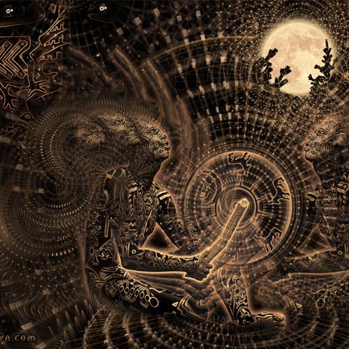 Digital Space & Shamanik - Parallel Univerce