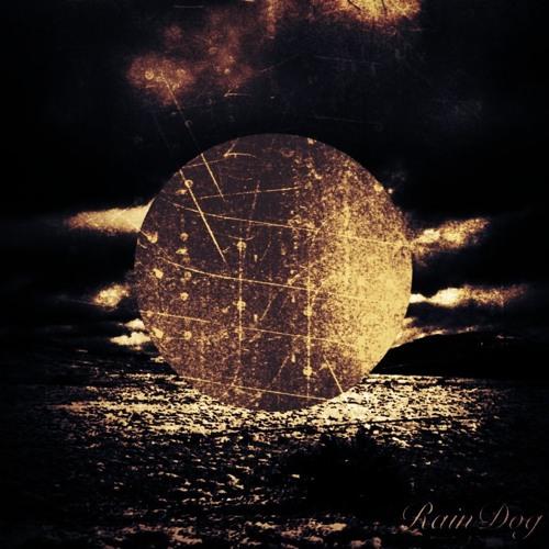 RainDog - Window