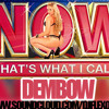 NOW THATS WHAT I CALL DEMBOW