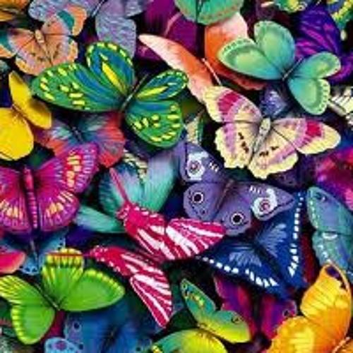 Shecky's Jazzy Tofu -Butterfly
