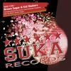 Brown Sugar & Kid Shakers - Bad Girl (John De Mark Remix)