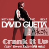 David Guetta feat Akon - Crank it up (Jay' Gwen Extended mix) FREE  DOWNLOAD