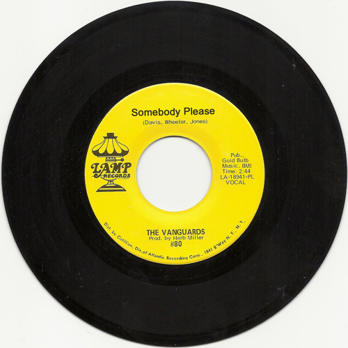Please (The Vanguards - Somebody Please sample hip hop beat)