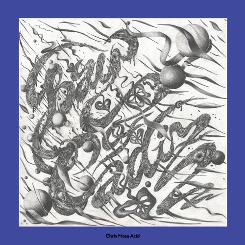 Chris Moss Acid - Bay Of Cadiz