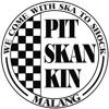 Pitskankin - Skaria.mp3