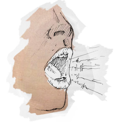Mr. voice