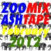 Zoomix Ashtape - February 2012