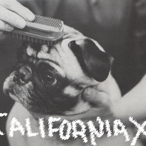 California X - Sucker
