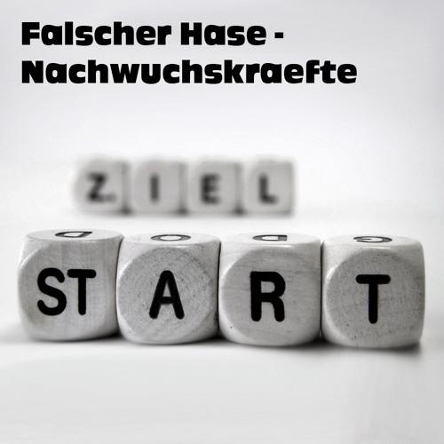 Falscher Hase - Nachwuchskräfte (Januar 2012) | Exklusiv-Mix für STYLECRAVE Deutschland