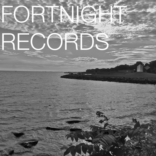 Fortnight February Mix