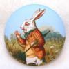 Rabbit on Purple - Voada Da Ding (preview)