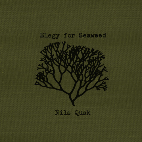 Elegy for Seaweed by Nils Quak