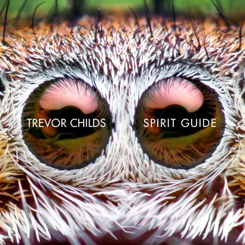 Spirit Guide: The Album
