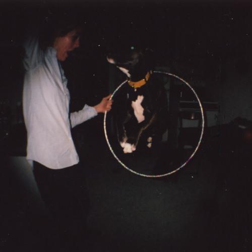 Slow Club - The Dog