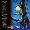 Iron Maiden - Fear Of The Dark (D-Trox Project bootleg)*FREEDOWNLOAD